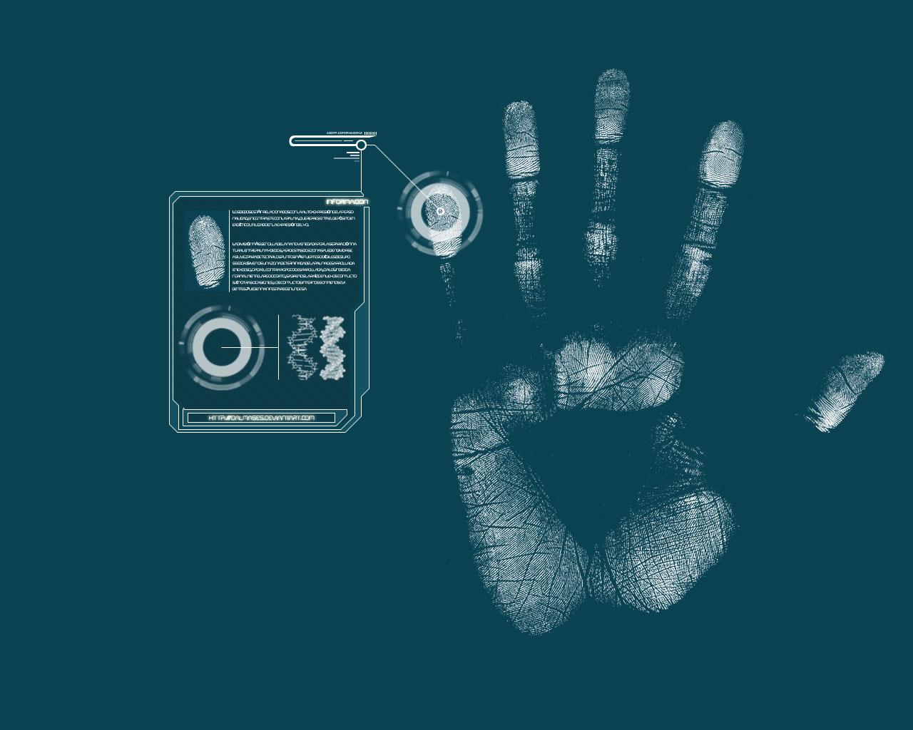 Wallpaper 1280x1024 Hands Scanners Fingerprints Databases Palm 1280x1024