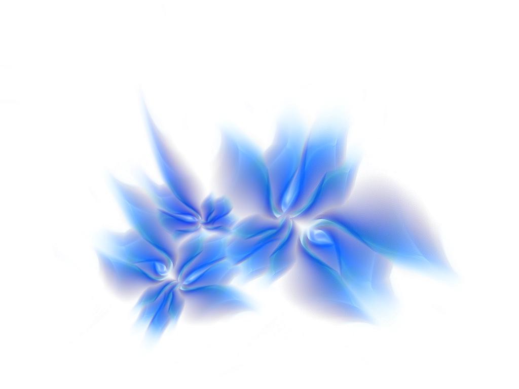 HD Flower Wallpaper 3D Flower Wallpaper 1024x768