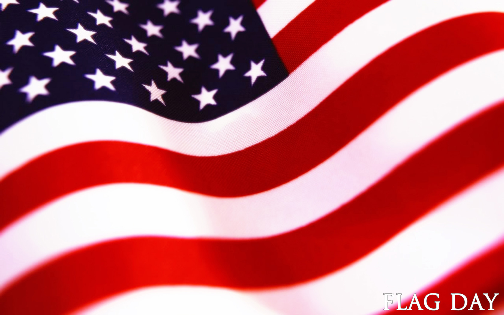 Flag Day computer desktop wallpapers pictures images 1680x1050