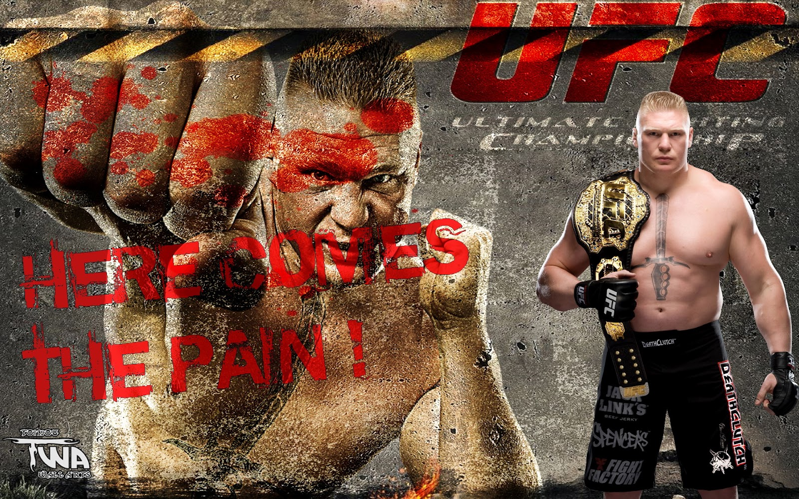 wallpapers brock lesnar wallpaper brock lesnar wallpaper brock lesnar 1600x1000