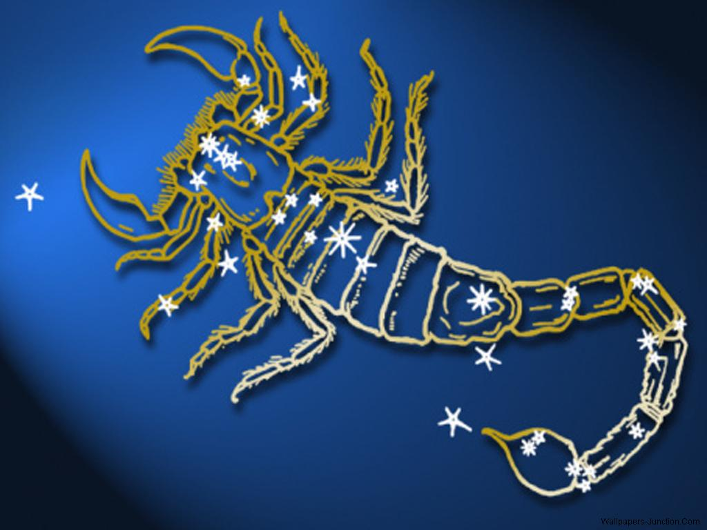 Zodiac Sign Scorpio Wallpapers 1024x768