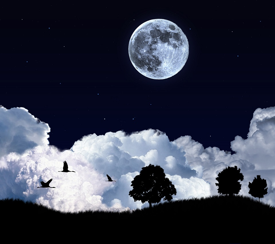 Moon Night Birds android HD wallpaper 960x853