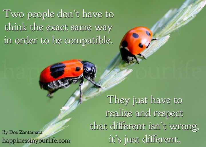 Quotes About Compatibility PC Android iPhone and iPad Wallpapers 720x516