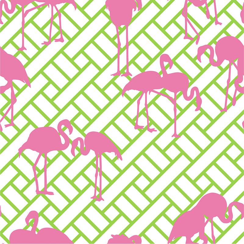 Maria Barros and her Fabulous Flamingos 800x800