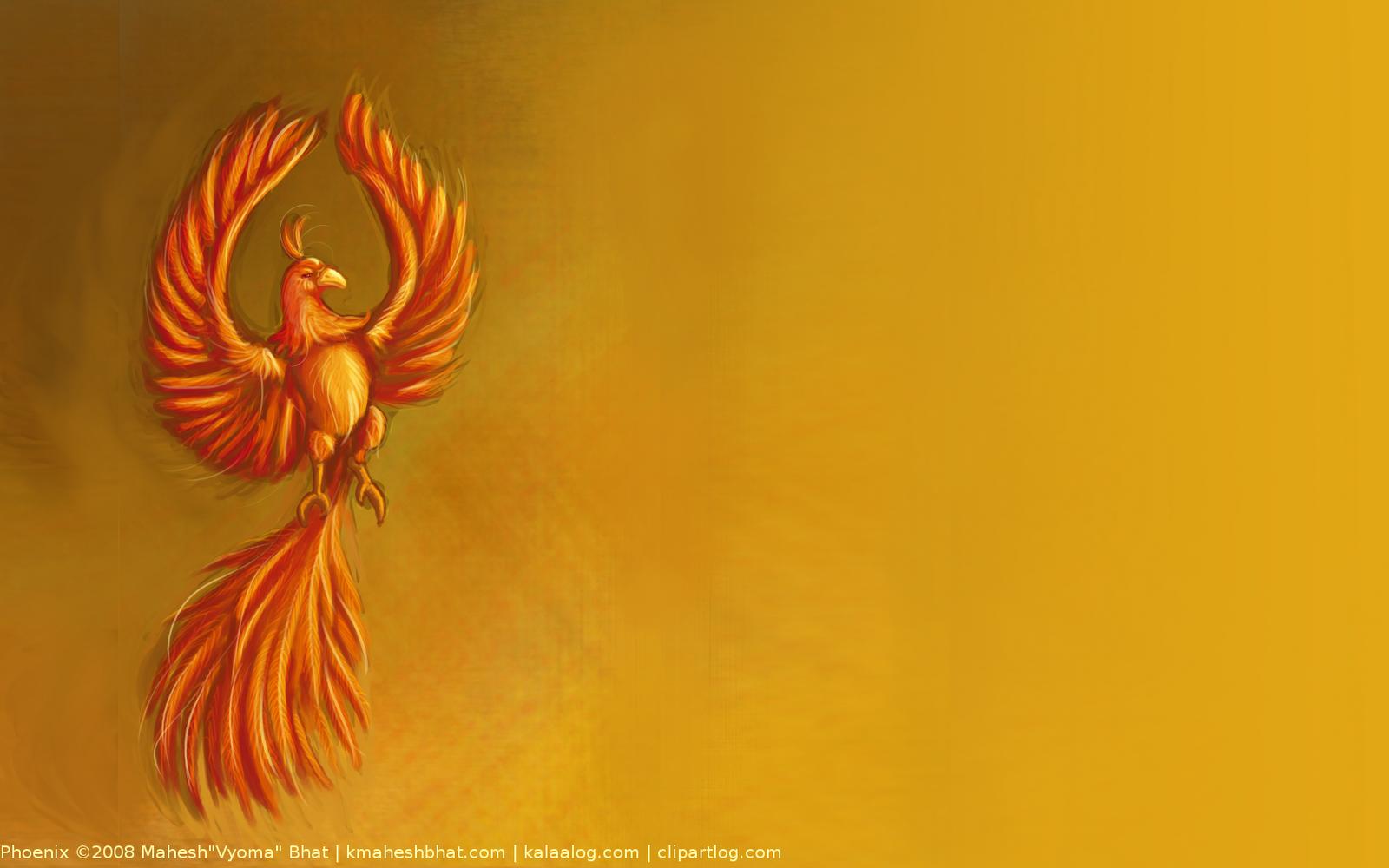 phoenix wallpaper 3 phoenix wallpaper 4 phoenix wallpaper 5 phoenix 1600x1000