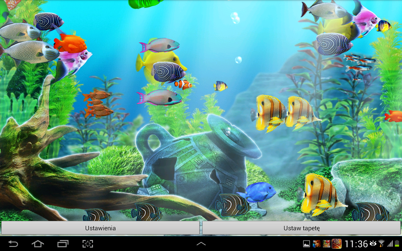 aquarium live wallpaper is an amazing quality active wallpaper now you 1280x800