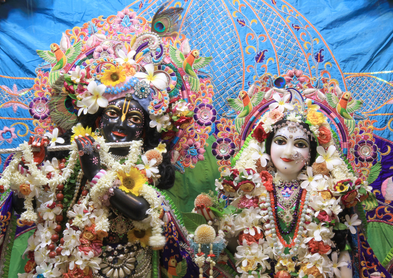 Lord Krishna HD Wallpapers God wallpaper hd 1224x864