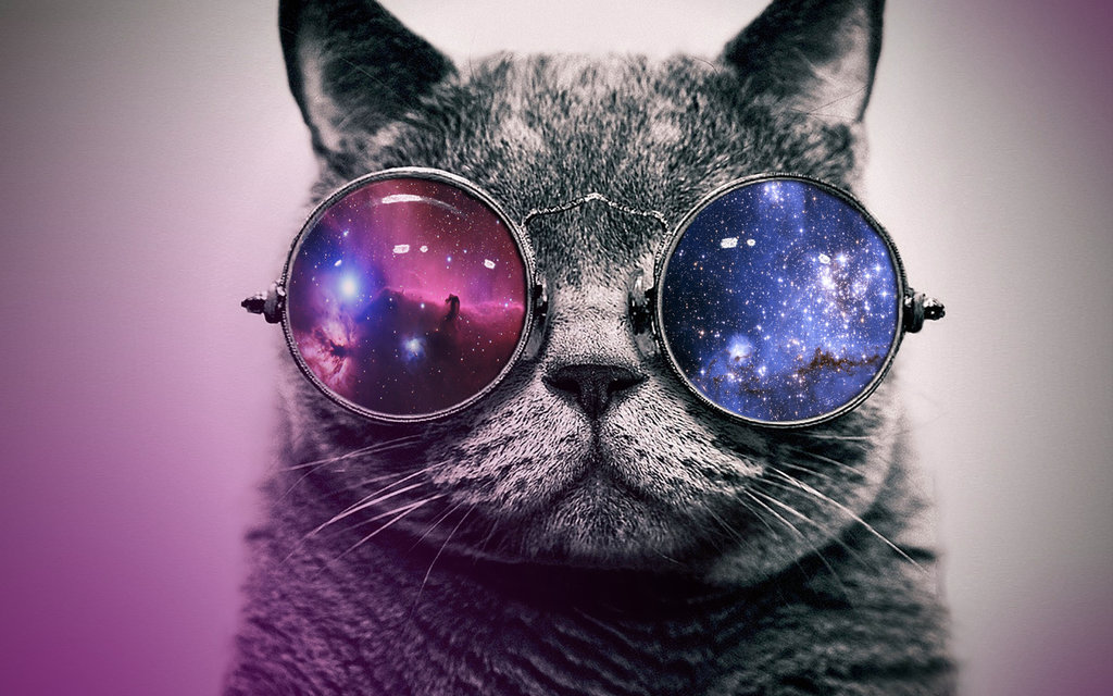 Hipster cat with glasses by AnneDeLune 1024x640