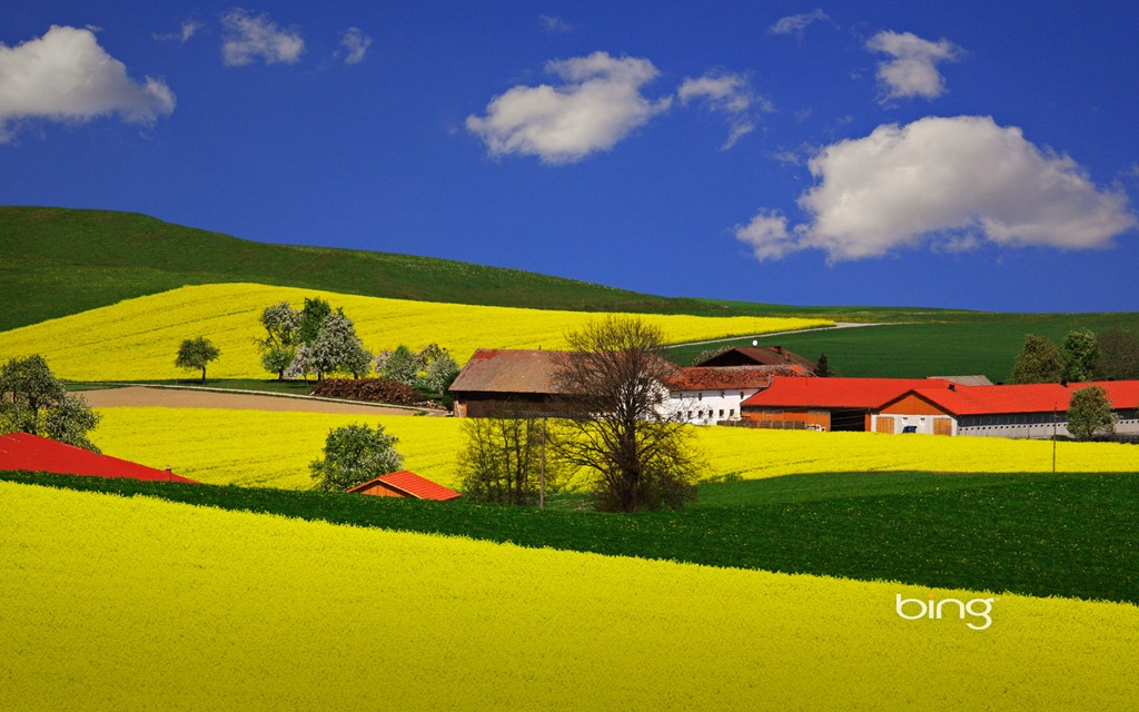 Popular Screensavers And Wallpaper 47 Images: [47+] Bing Summer Wallpaper Windows 7 On WallpaperSafari