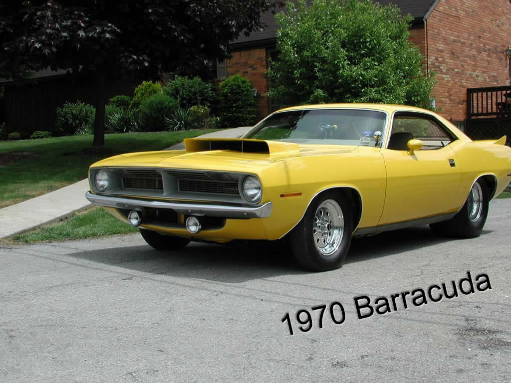 American Muscle Cars   American Muscle Car Wallpaper   American Muscle 1024x768