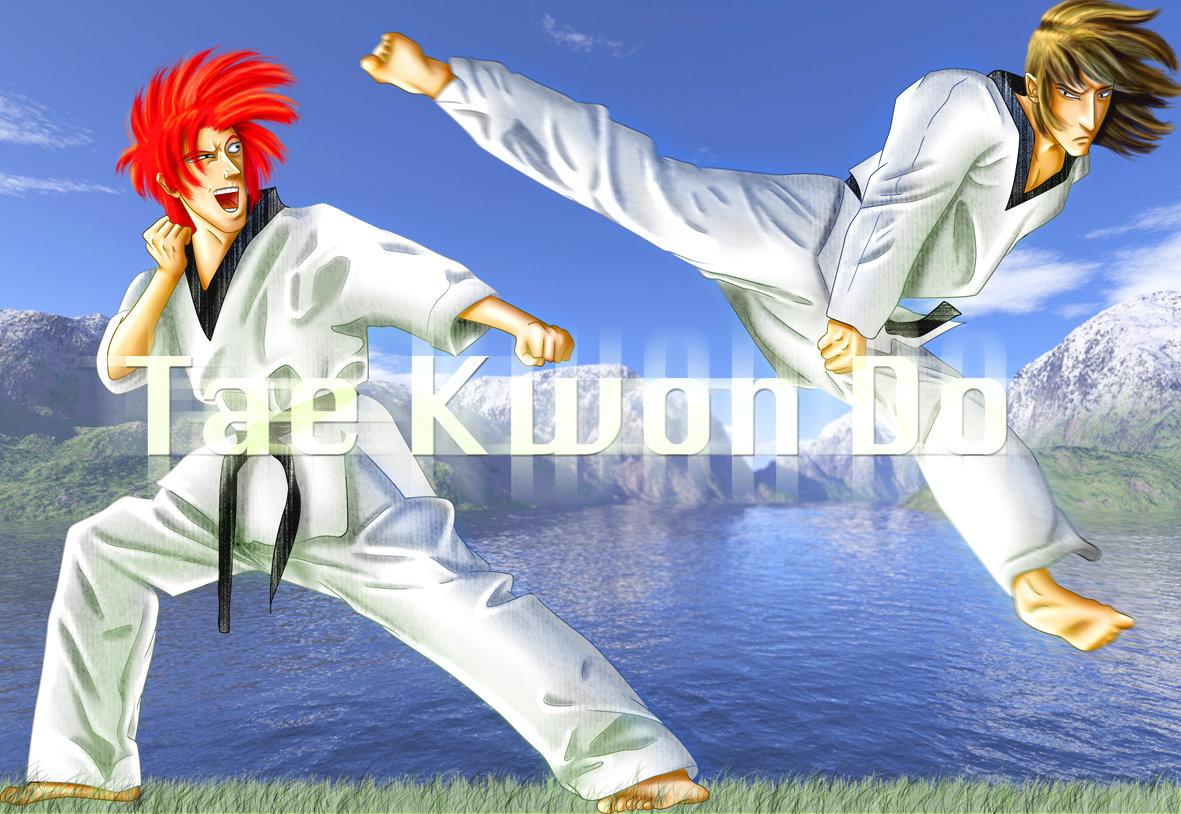 Taekwondo by tchintchie 1181x814