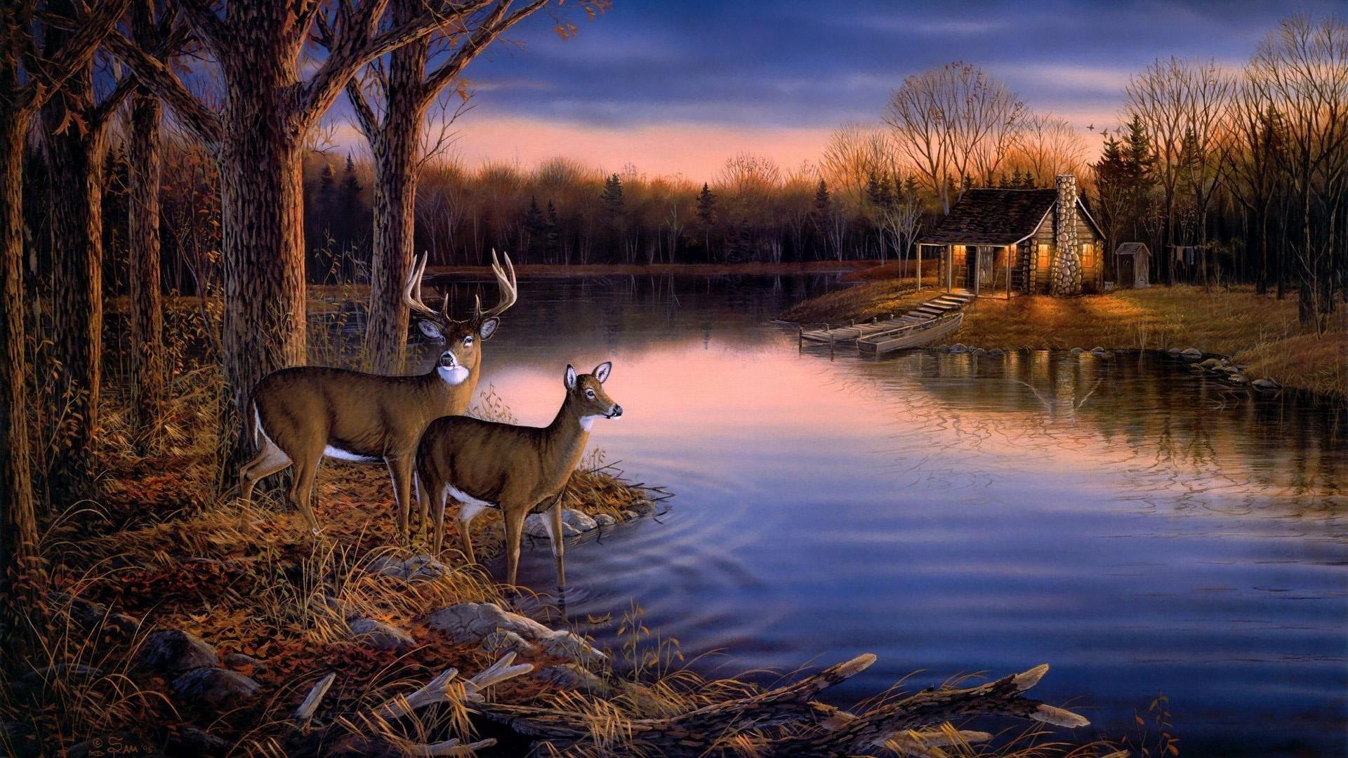 Deer Hunting Wallpaper Border landscape wallpaper Picture 1920x1080