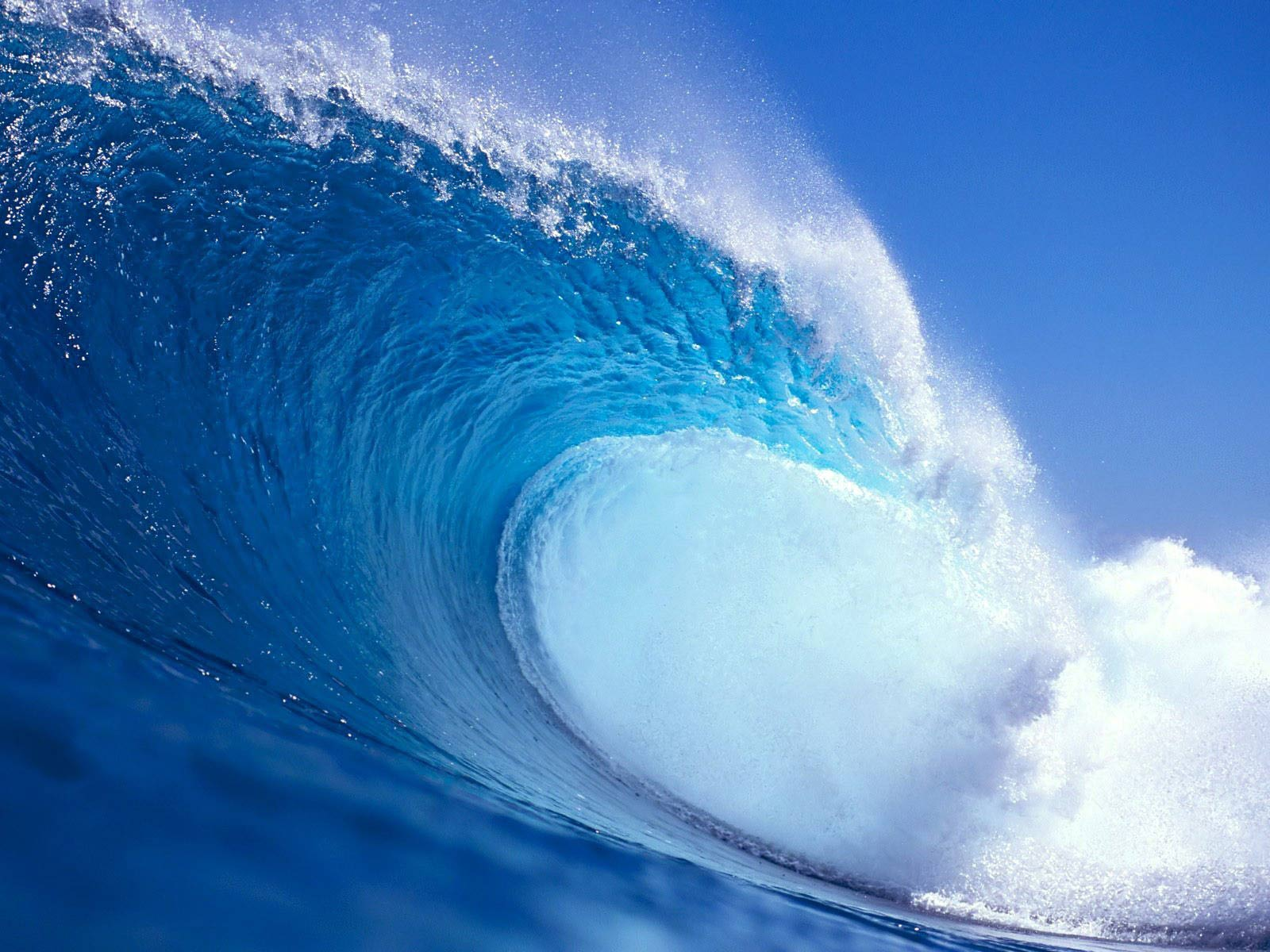 Surfing Wave Wallpapers Surf Wallpapers 1600x1200