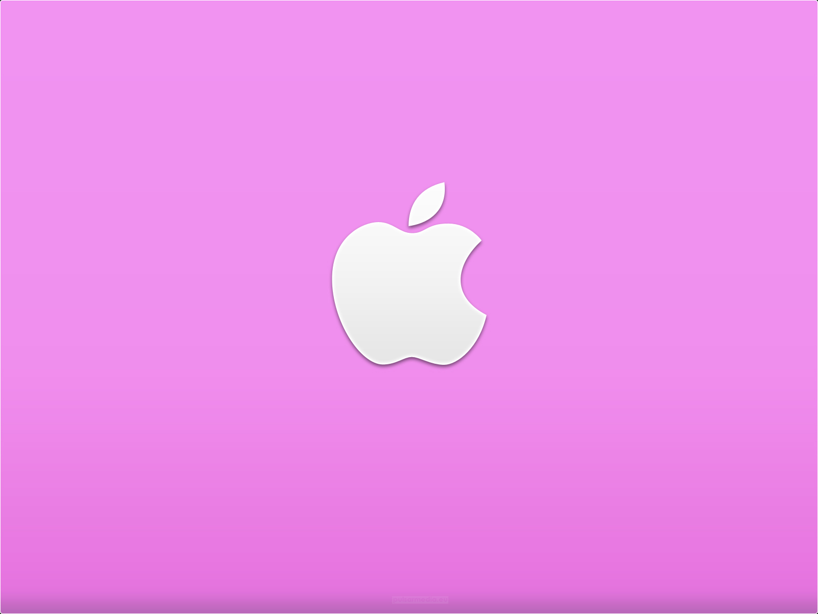 Black and White Wallpapers Pink Apple Logo Wallpaper 1600x1200