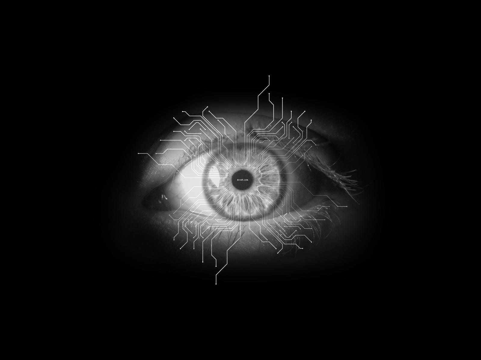 black eyes wallpaper beautiful black eyes wallpapers black cat eyes 1600x1200