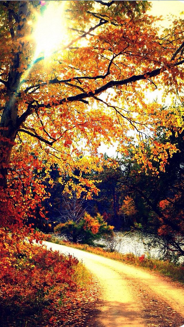 Autumn iPhone 5 wallpaper iPhone Wallpaper Pinterest 640x1136
