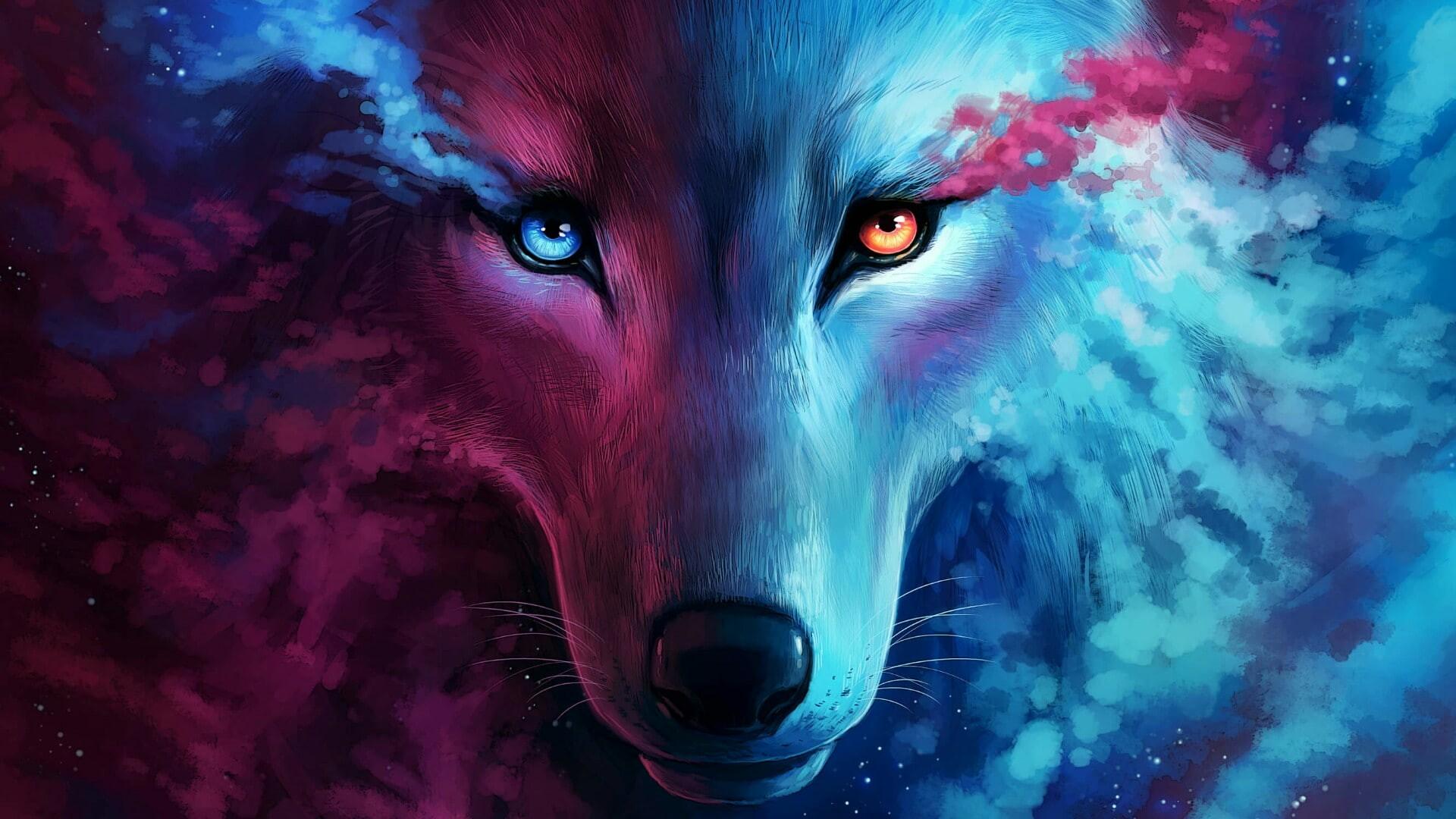 Best Cool Wolf Wallpaper 2021 Cute Wallpapers 1920x1080
