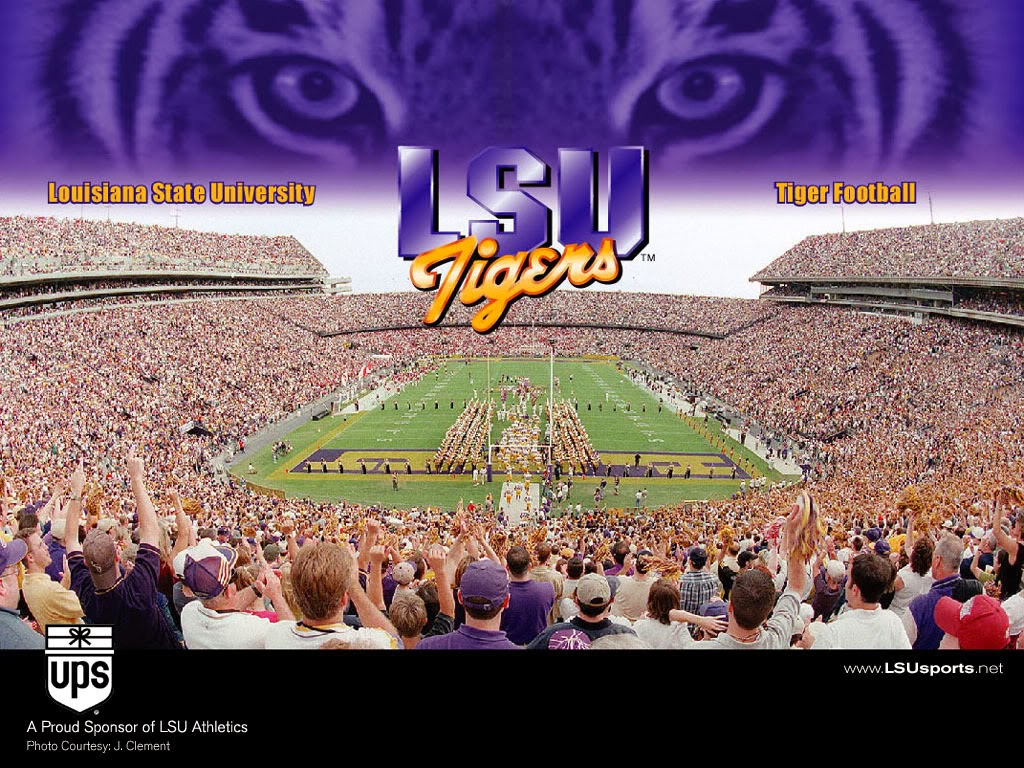 Lsu Football Wallpaper Hd Wallpaper Full HD 1024x768