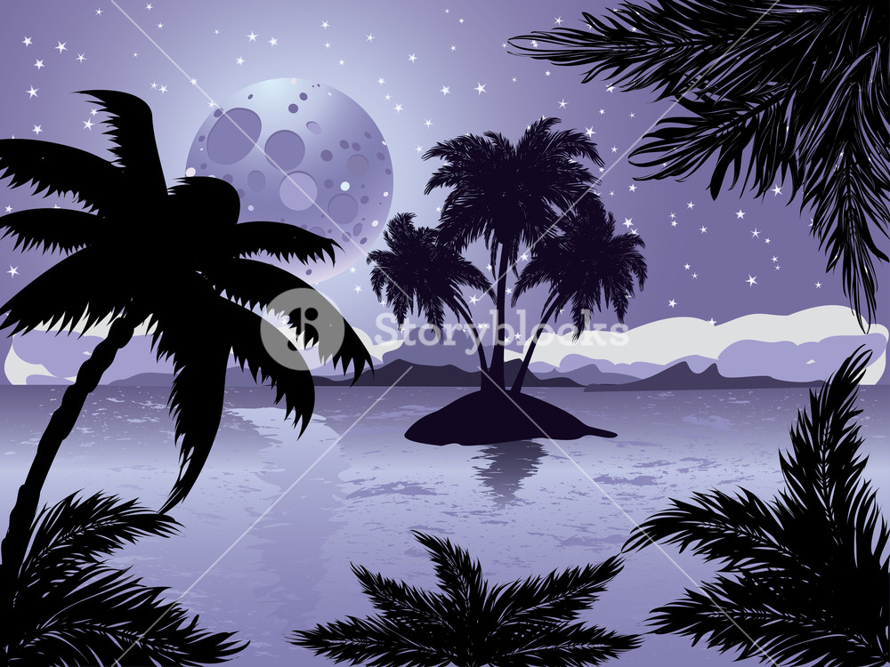 Palm trees silhouette on night tropic beach background with 1000x750