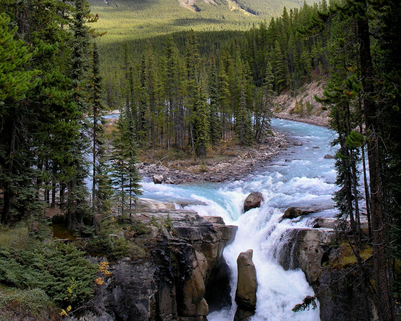 Sunwapta Falls Canada wallpaper   Nature wallpapers   wallpapers 1280x1024