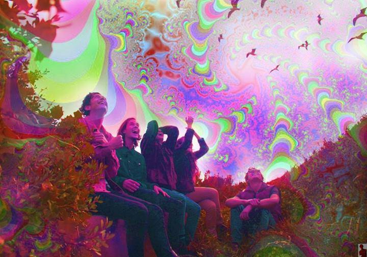 acid trip quotes tumblr