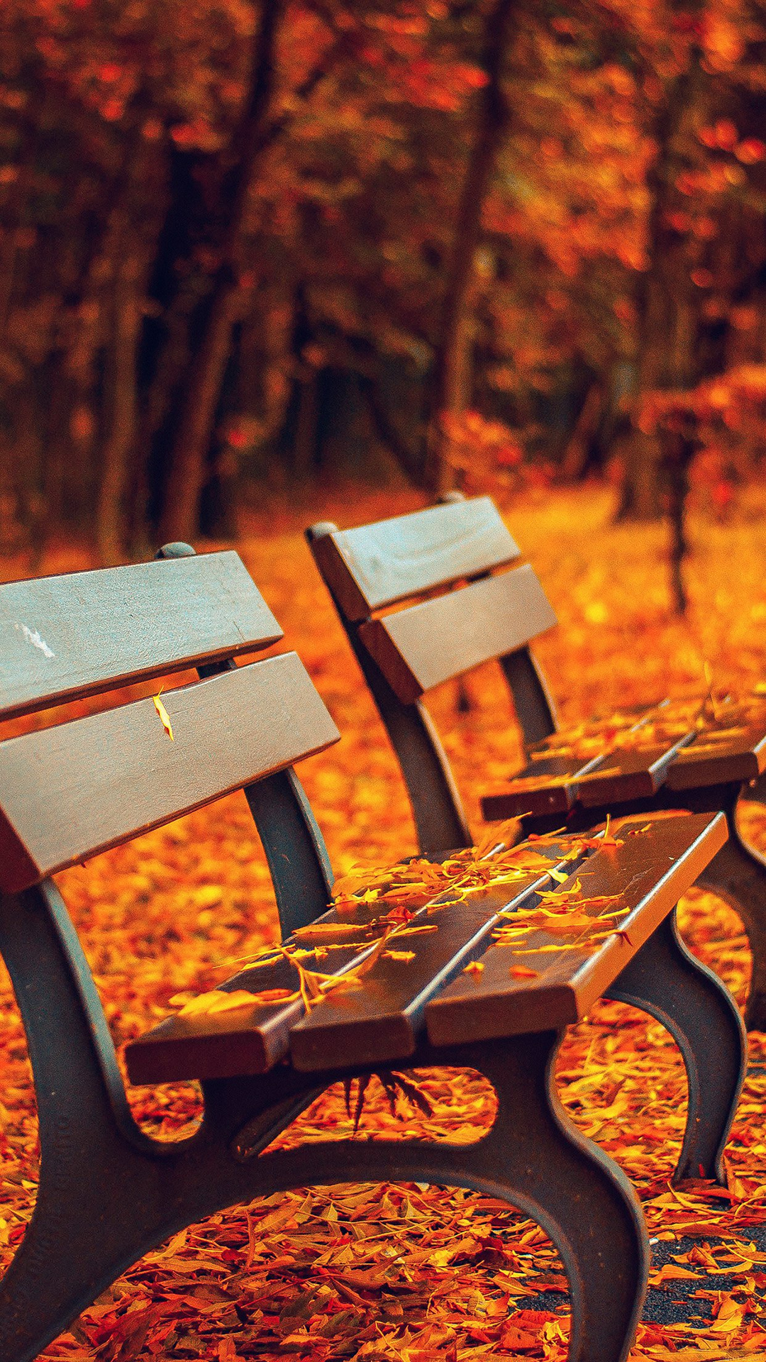 Nature Autumn Fall Leaves On Roadside Bench iPhone 6 Wallpaper 1080x1920