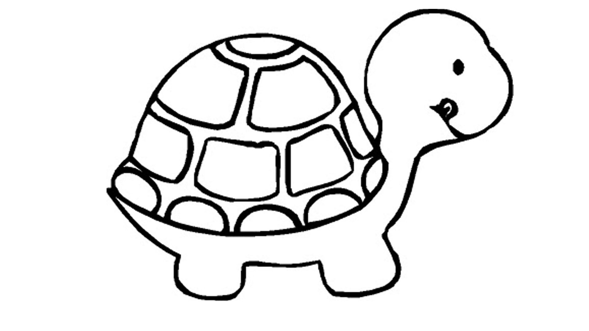 Coloring pages hd - Turtle Coloring Pages Wallpapers Pictures