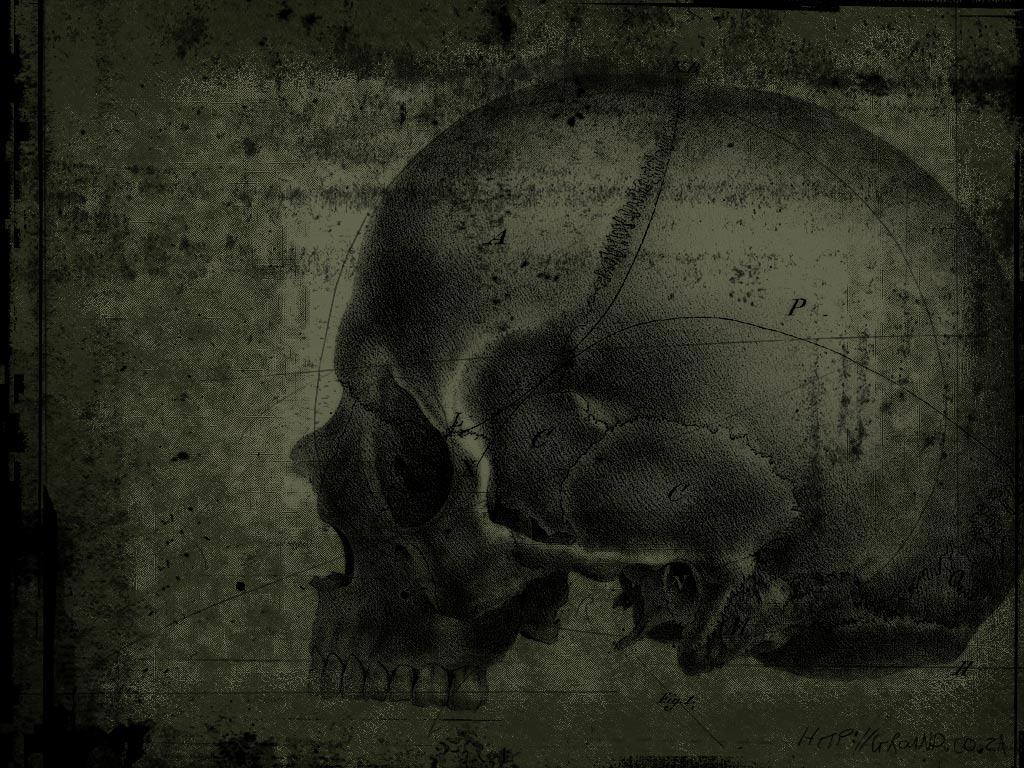 HQ Green Skull Wallpaper   HQ Wallpapers 1024x768