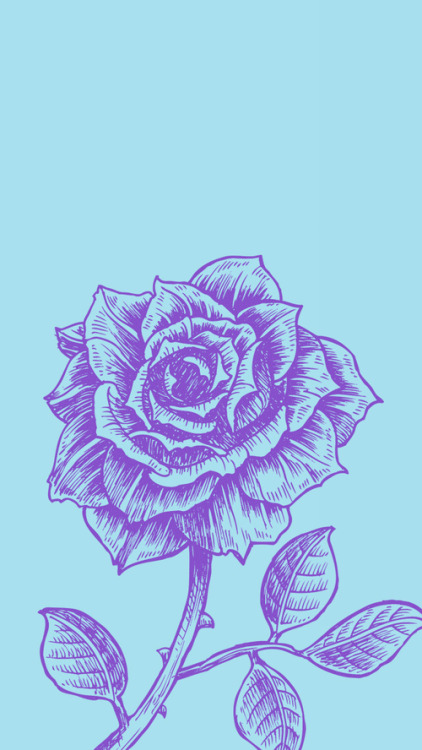 rose wallpaper on Tumblr 422x750