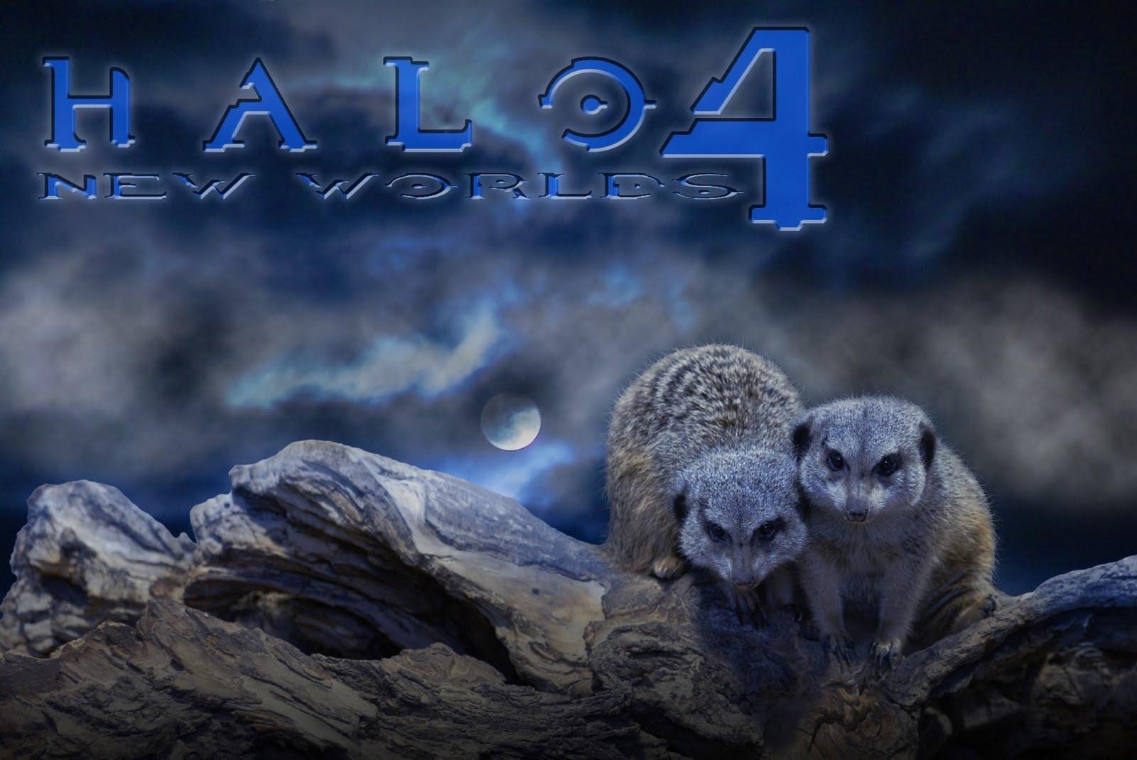 Halo 4 HD Wallpapers New Worlds Desktop Wallpapers 1600x1070