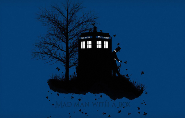Wallpaper doctor who doctor who tardis tardis box wood leaves 596x380