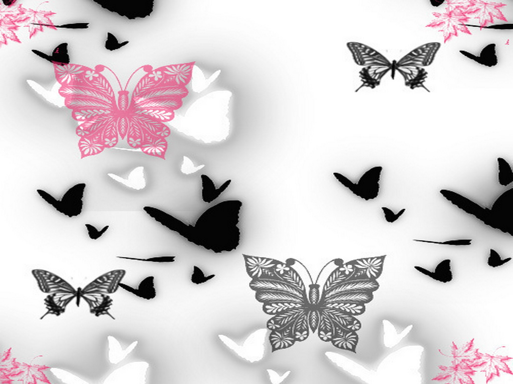 Pink and Black Butterfly Wallpaper 1024x768