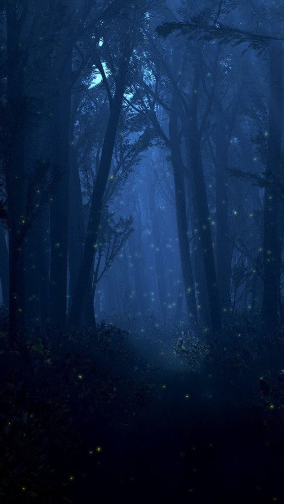 Free Download Dark Forest Wallpaper Iphone Wallpapers 576x1024 For