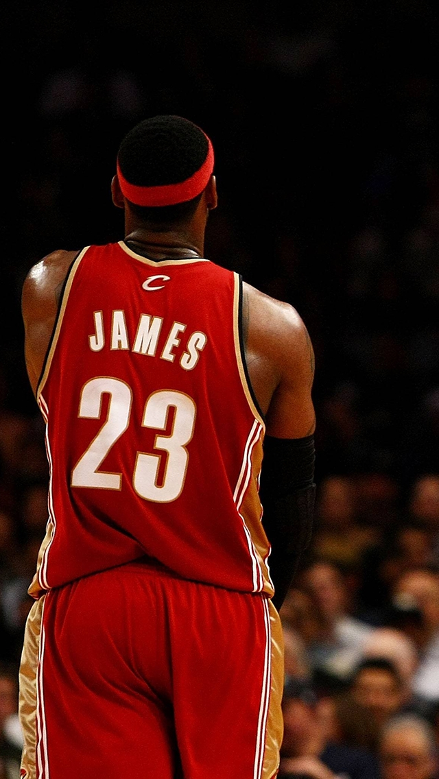 miami heat lebron james iphone wallpaper tags basketball heat james 640x1136