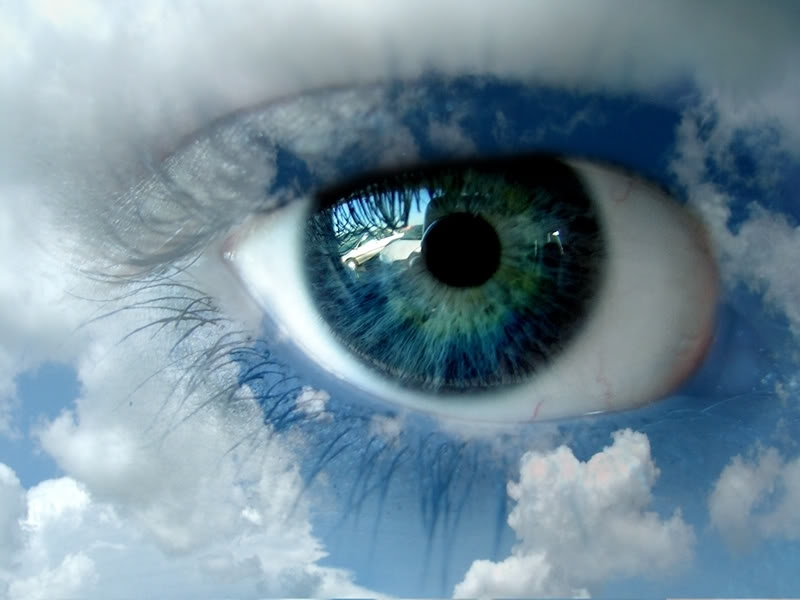 Blue eye   Eyes Wallpaper 8326071 800x600