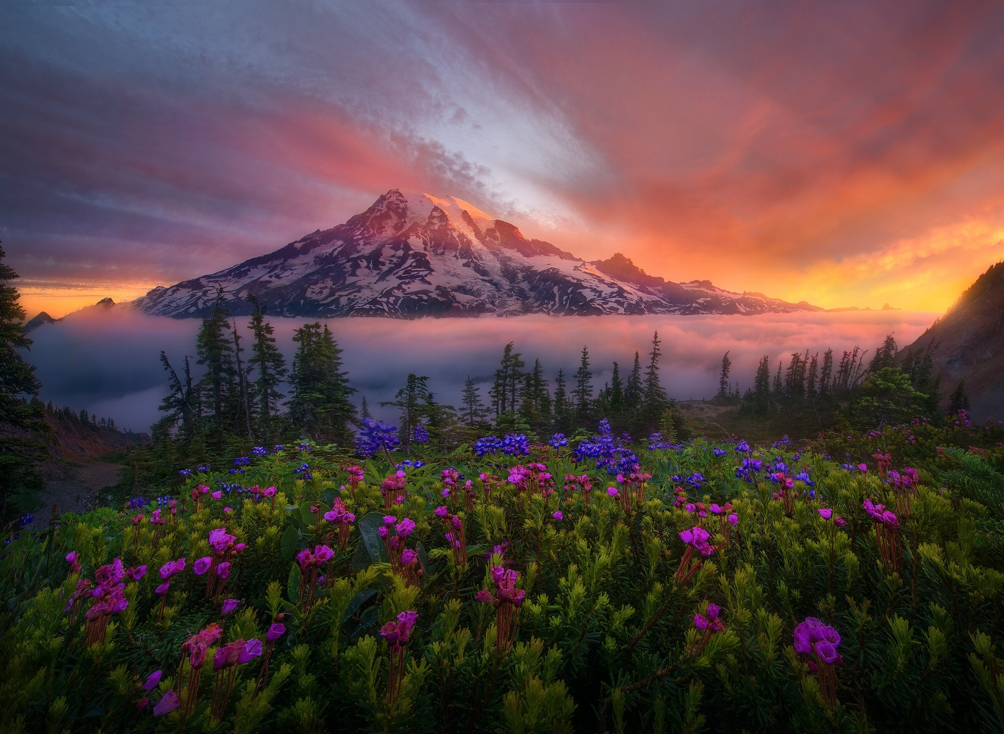 Mount Rainier Wallpapers and Background Images   stmednet 2048x1498