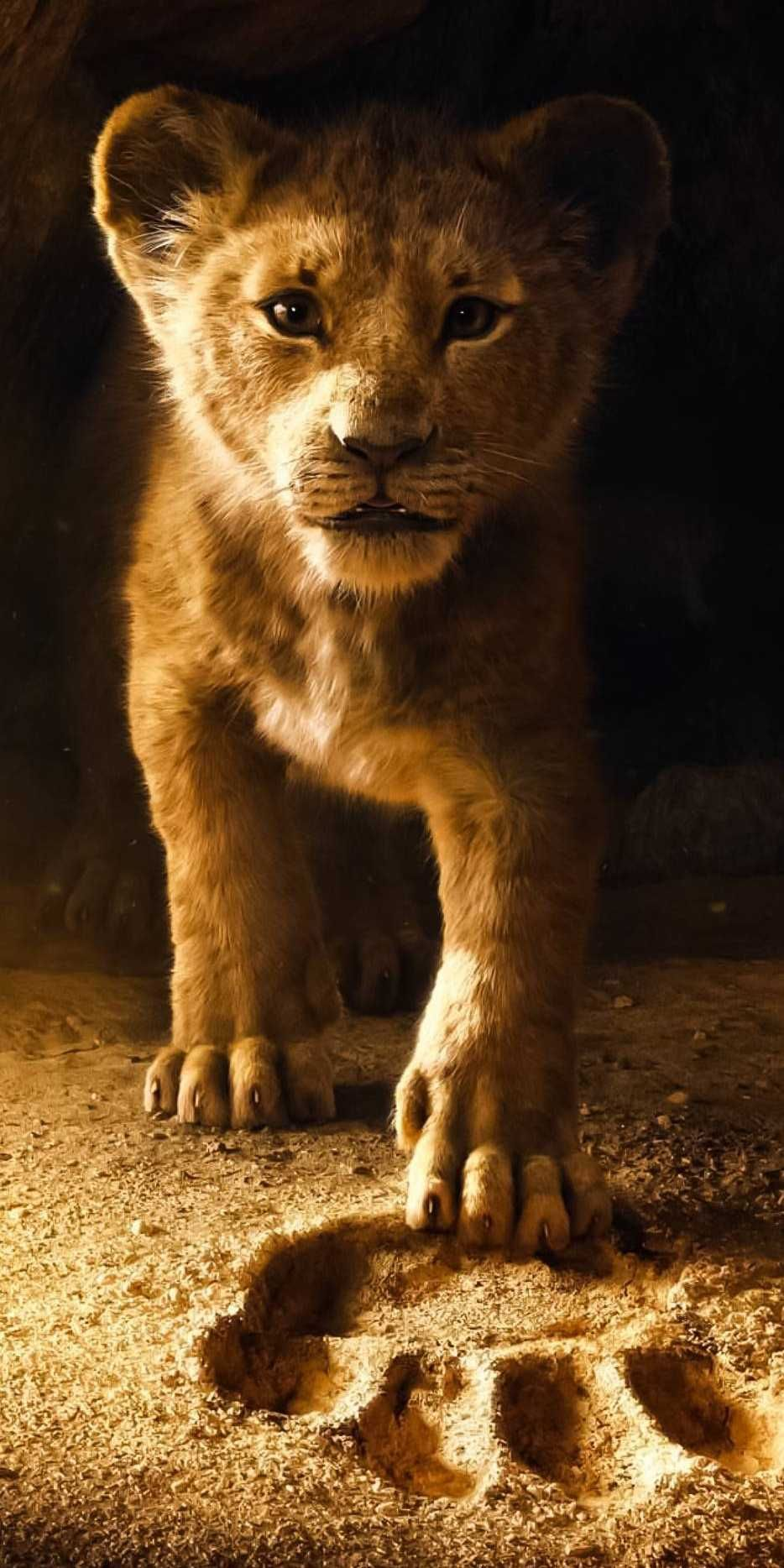 Free Download The Lion King Iphone Wallpaper Iphone