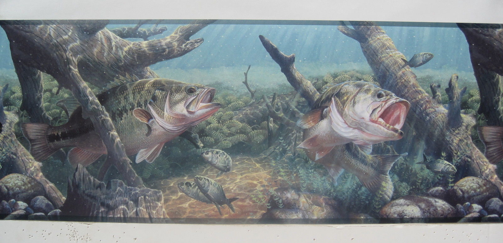 BASS FISHING FRESH WATER FISHING Wallpaper Border 9 1600x773