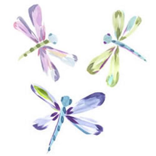 Dragonfly Wallies   Wallpaper Border Wallpaper inccom 525x525