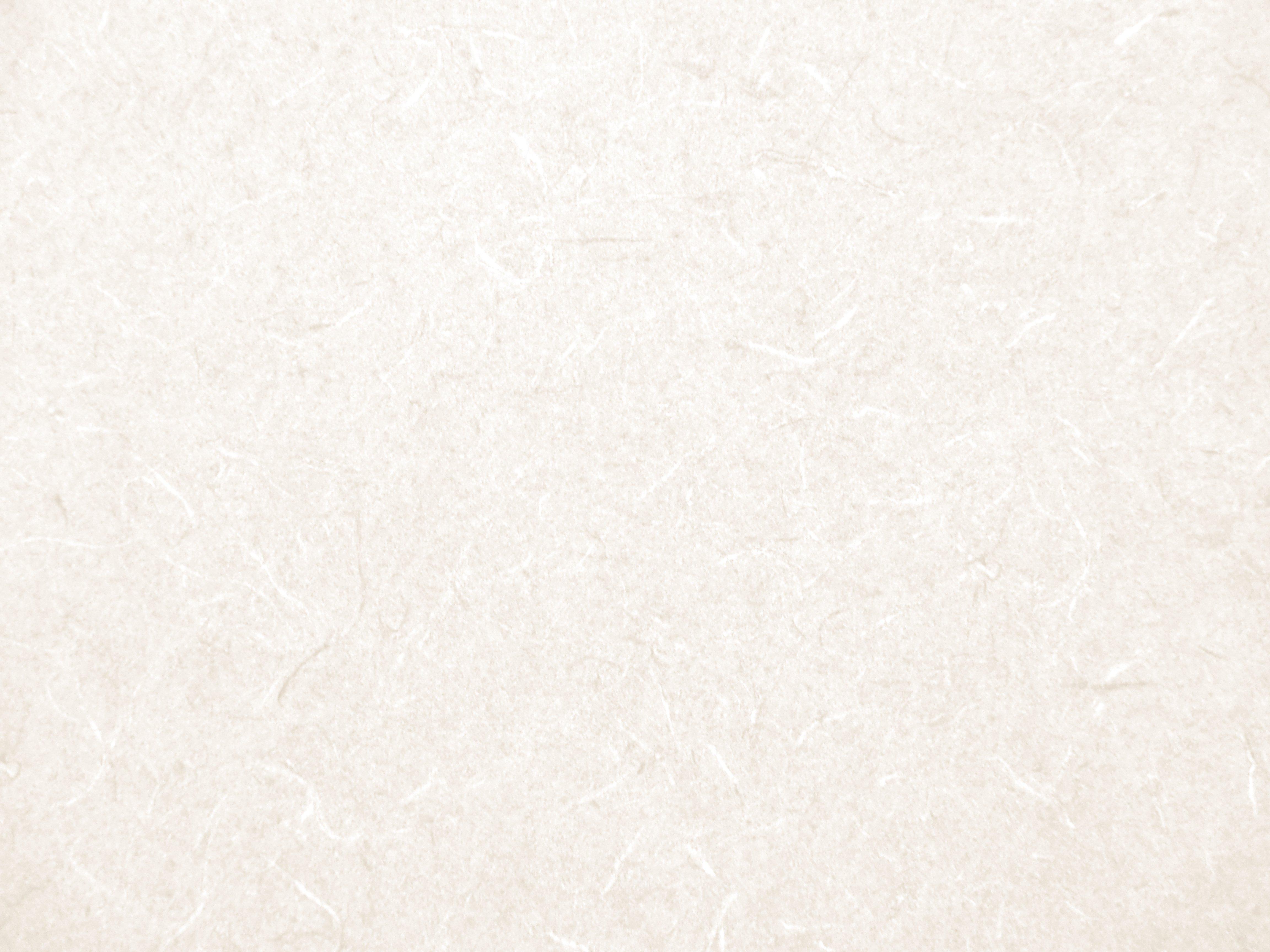 Damask Wall Sticker Cream And White Wallpaper Wallpapersafari