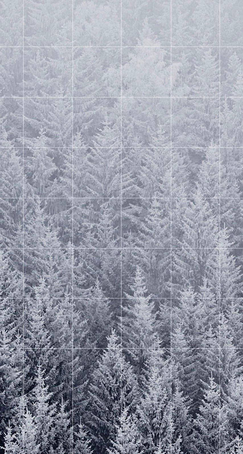 Forest landscape Seppaku shelf borders wallpapersc iPhone6s 854x1590