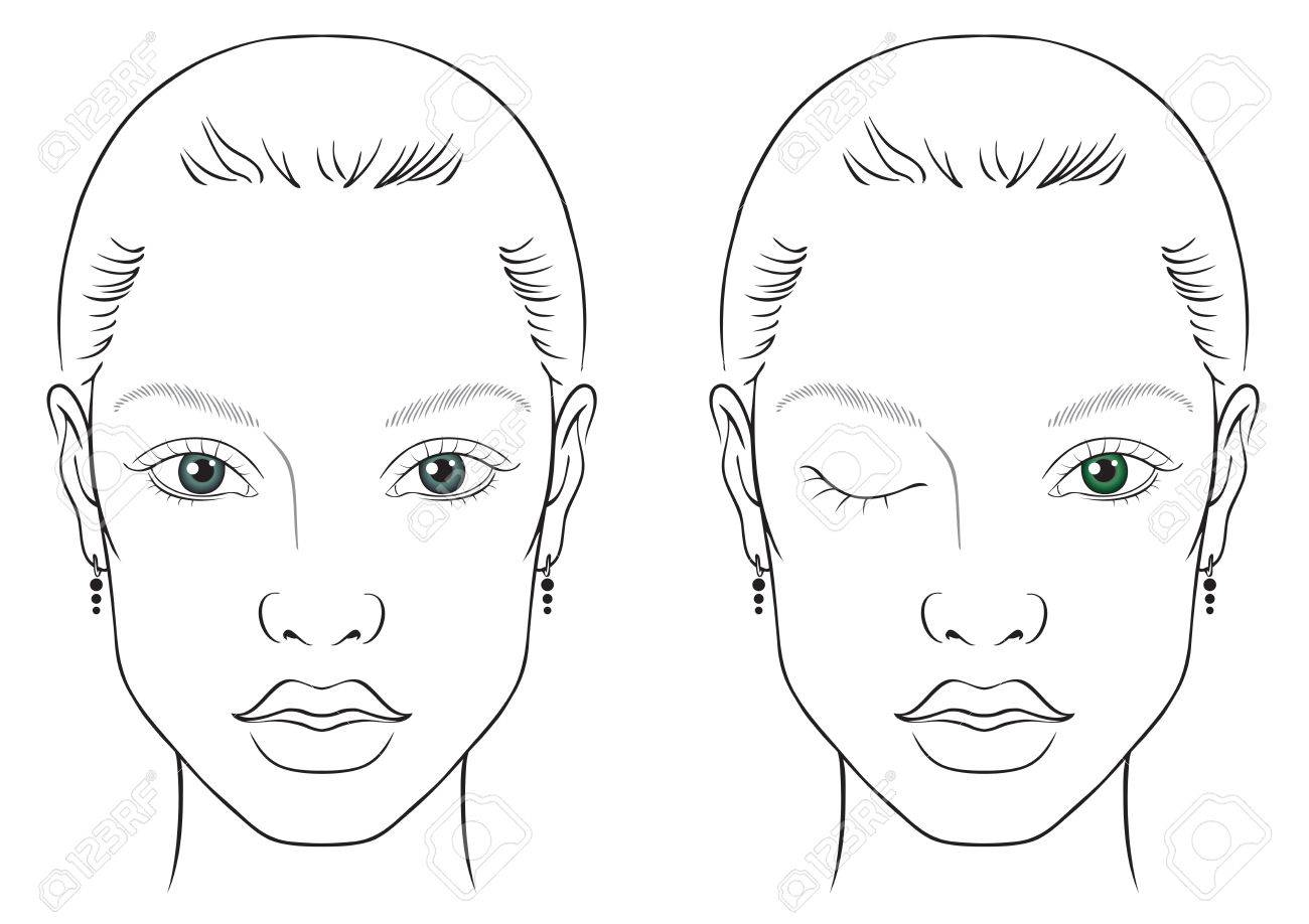 Illustration On A White Background Outline Of The Human Female 1300x918