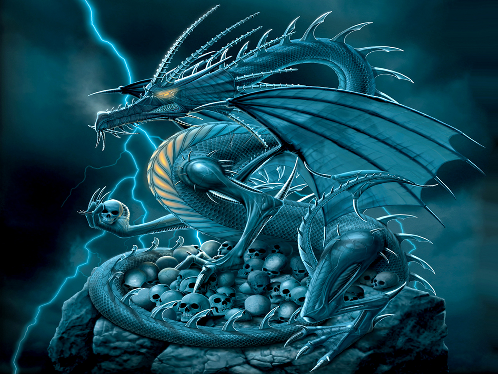 Cool Dragon HD Wallpaper Backgrounds Download 1600x1200