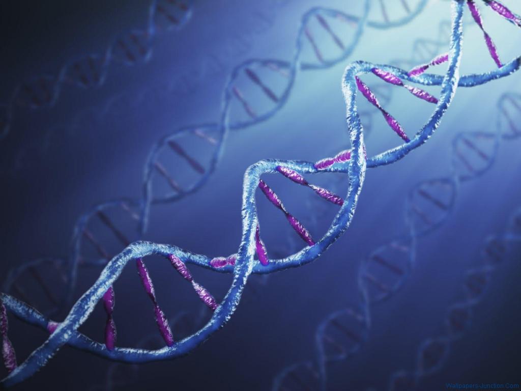 DNA Wallpaperjpg 1024x768