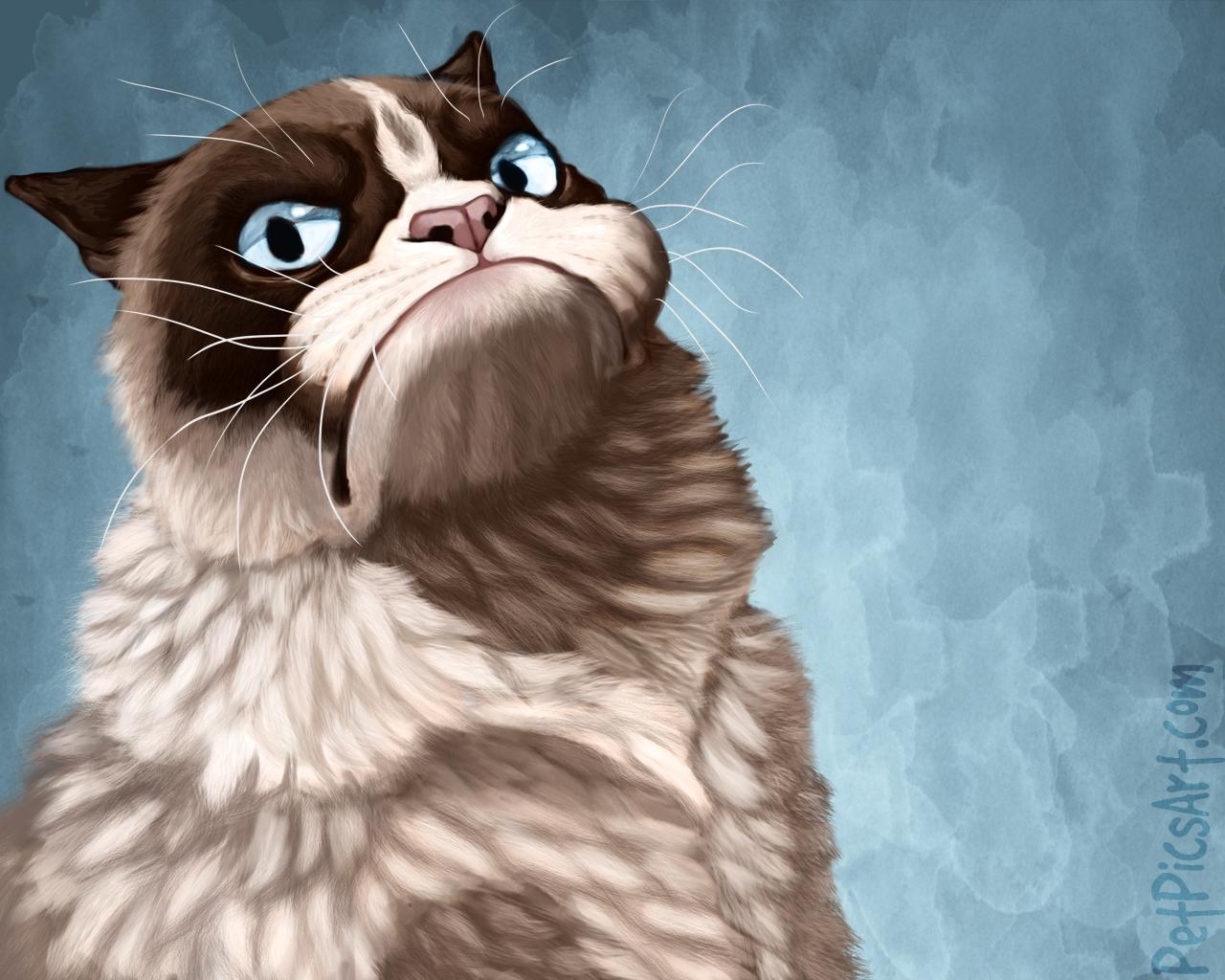 Grumpy Cat Pictures 1280x1024
