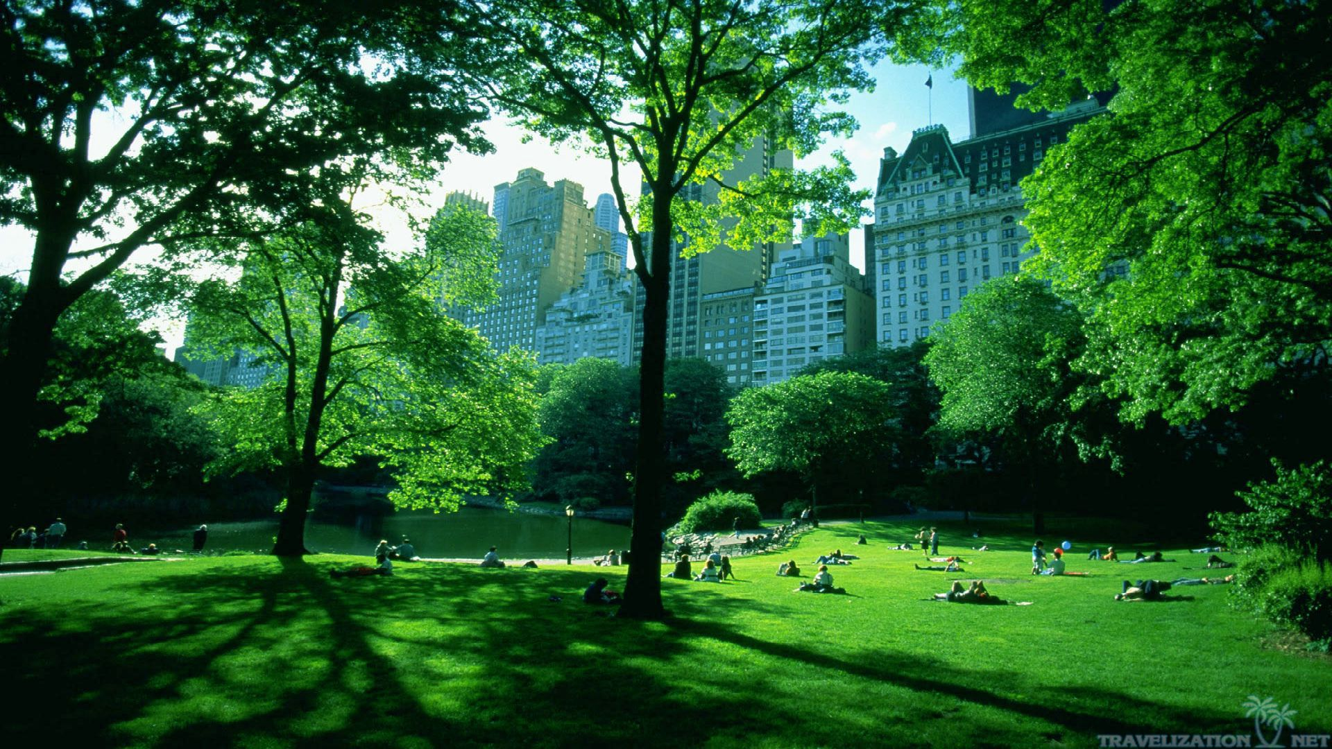 Central park wallpaper wallpapersafari for Central park wallpaper