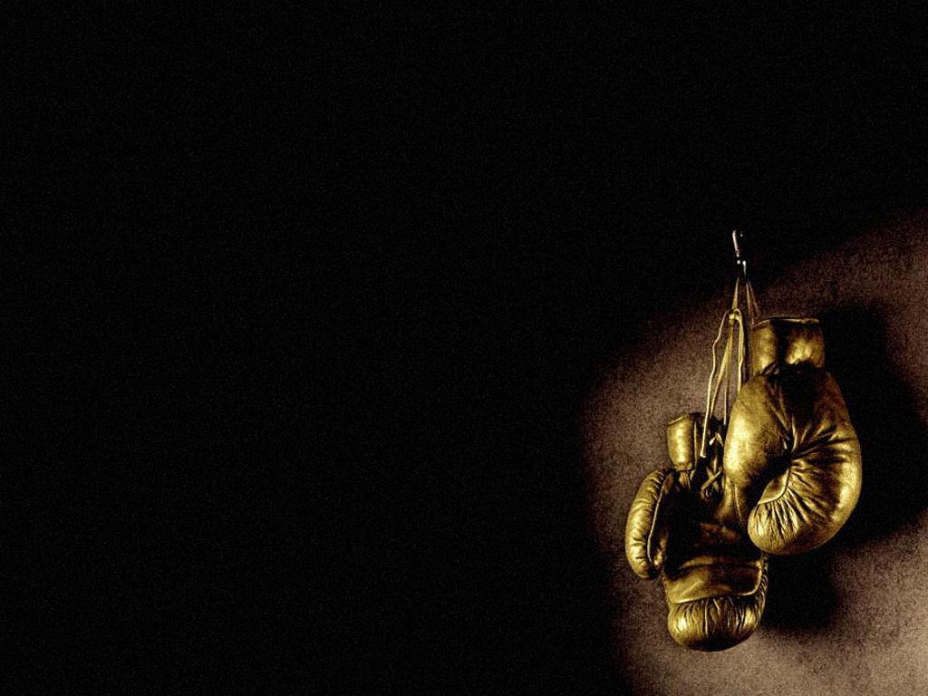 74] Kickboxing Wallpaper on WallpaperSafari 1024x768