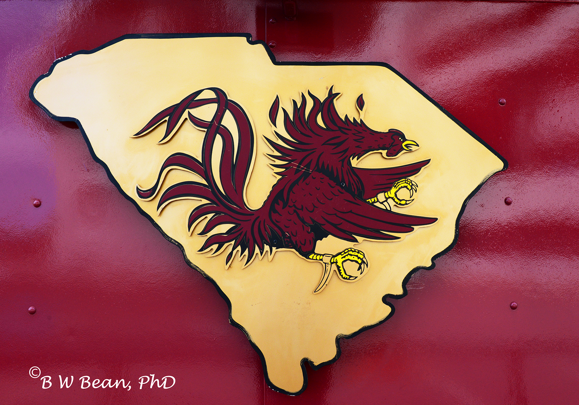 in south carolina football is a passion visit the university of south 1920x1345