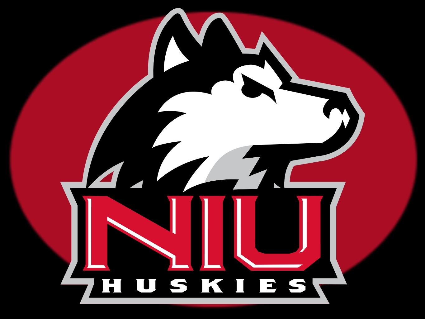NIU Huskies Wallpaper 6 Images   Frompo 1365x1024