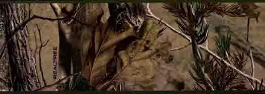 Real Tree AP Wallpaper Border   Wallpaper Border Wallpaper inccom 525x186